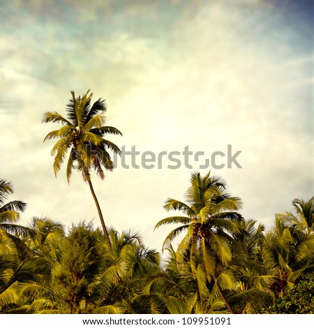 beach background - stock photo