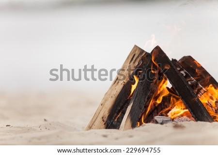 Beach campfire on lake with sand shore. burning wood on white sand in daytime  - stock photo