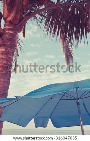 Beach chair, palm, and umbrella. Travel concept  - stock photo