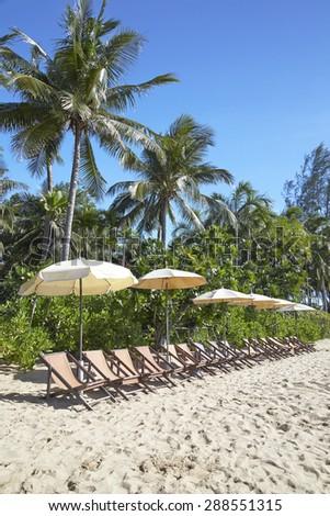 Beach chairs and umbrella - stock photo