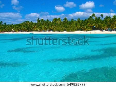 Beach Dominicana on the tropical island. Clear blue water, sand and palm trees. Beautiful vacation spot, treatment and aquatics
