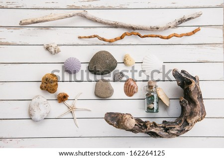 Beach Finds - stock photo