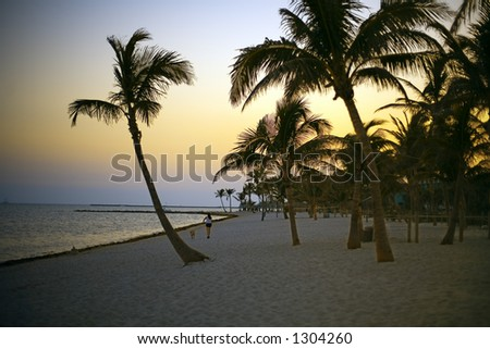 Beach heaven in Florida - stock photo