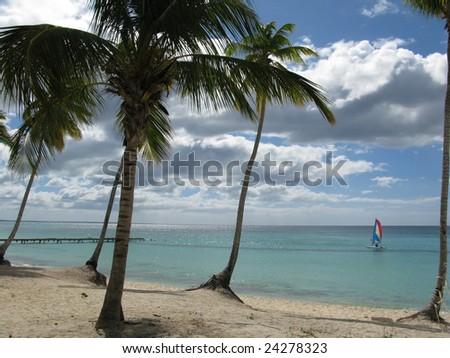 beach in Dominicus, Dominican Republic - stock photo