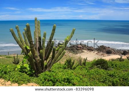 Beach in Jericoacoara on the northeast coast of Brazil - stock photo