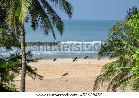 beach in South Goa, India with palm trees and stones