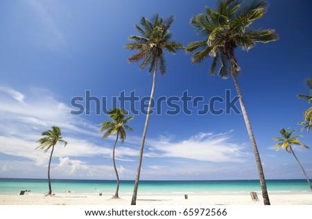 beach in the caribbean - stock photo