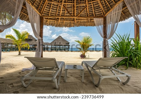 beach lounge chairs and a beach bar at the shore of indian ocean zanzibar - Beach Lounge Chairs