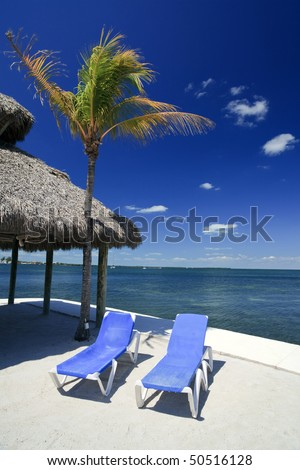 Beach lounge chairs in Key Largo on the Florida Bay side with a palm tree and thatched hut in the background with a polarized blue sky.