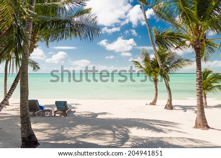 beach, nature, sea, summer and leisure concept - tropical beach with palm trees - stock photo