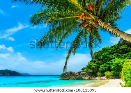 Beach of Similan Islands at Phang Nga in Thailand  - stock photo