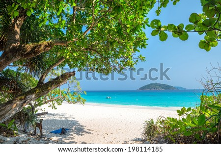 Beach of Similan Koh Miang Island in national park, Thailand  - stock photo