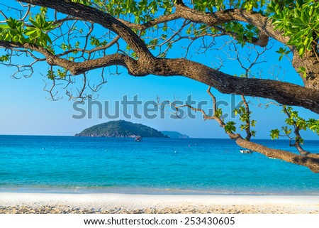 Beach of Similans Koh Miang Island in national park, Thailand  - stock photo