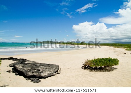 beach of the Galapagos Islands - stock photo