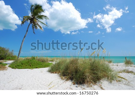 Beach on Captiva Island, Gulf Coast of Florida - stock photo