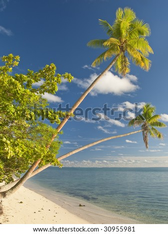 Beach on Huahine island, French Polynesia