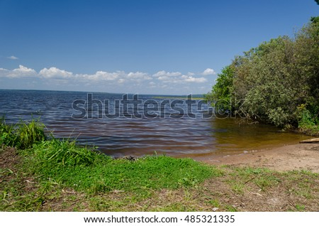beach on the river in the woods in the summer