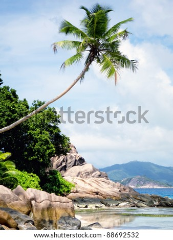 Beach on the Seychelles - stock photo