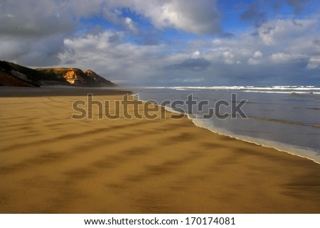 Beach on the South island of New Zealand - stock photo
