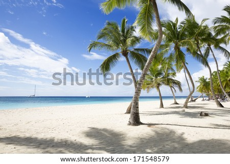 Beach on the tropical island. Clear blue water, sand and palm trees. Beautiful vacation spot. Excellent windsurfing. - stock photo