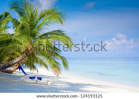 Beach on tropical island, Maldives - stock photo