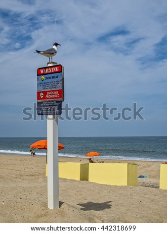 Beach regulation sign with a sea gull sitting on top. - stock photo