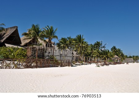 Beach Resort with Palm Trees and Huts