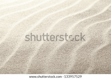 Beach sand as background, close up view - stock photo