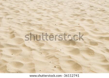 Beach sand background - stock photo