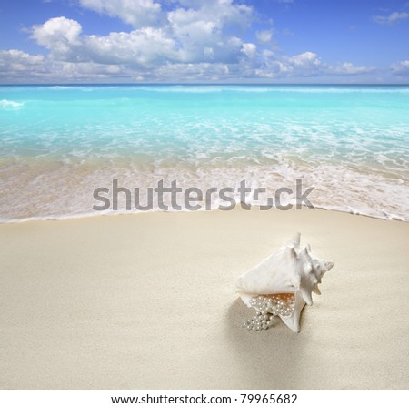 beach sand pearl necklace shell like a summer vacation symbol in turquoise caribbean sea [Photo Illustration] - stock photo