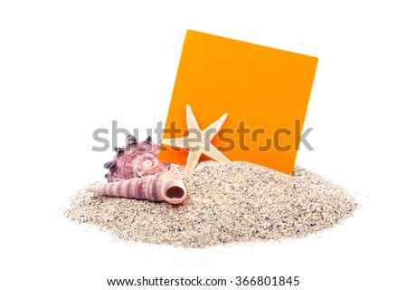 beach sand, shells and seastar border on white - stock photo