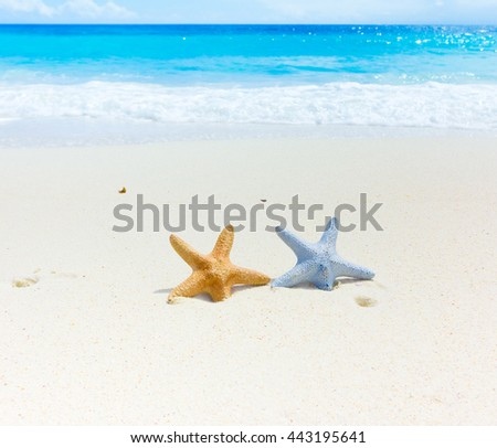 Beach Sand Vacations  - stock photo