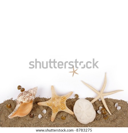 Beach sand with sea shell and star fish postcard - stock photo