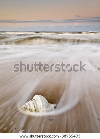 Beach seascape at sunset with a white shell in the foreground surrounded by the foam of the waves. - stock photo