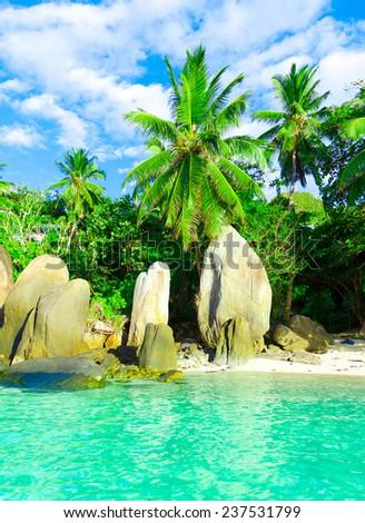 Beach Seascape Summer  - stock photo