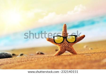 Beach, starfish in sunglasses on the seashore - stock photo