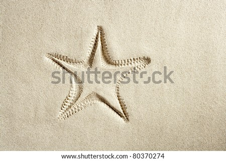 beach starfish print on white caribbean sand such a summer vacation symbol