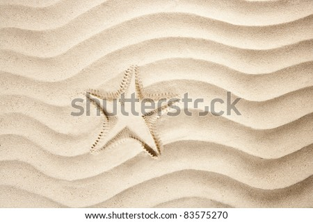beach starfish printed over white caribbean sand such a summer vacation symbol - stock photo