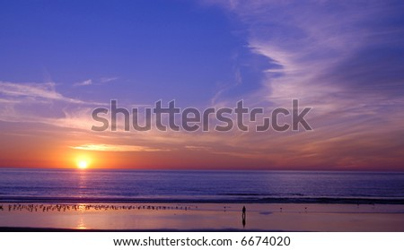 Beach sunset with a peaceful man and birds - stock photo