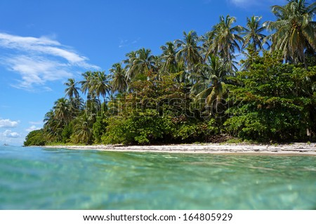 Beach taken from the water surface with beautiful tropical vegetation, Caribbean sea, Zapatillas islands, Bocas del Toro, Panama - stock photo