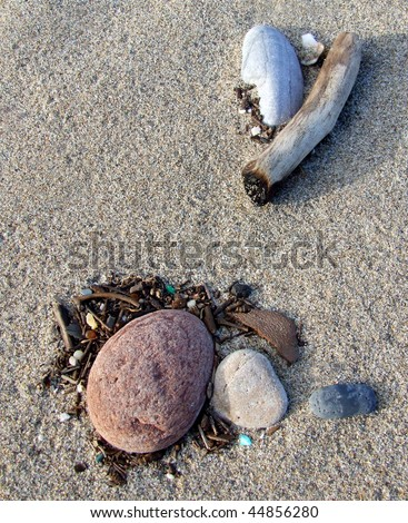 Beach Treasures - stock photo