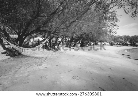 Beach tree sand and blue sea in Thailand vintage - stock photo