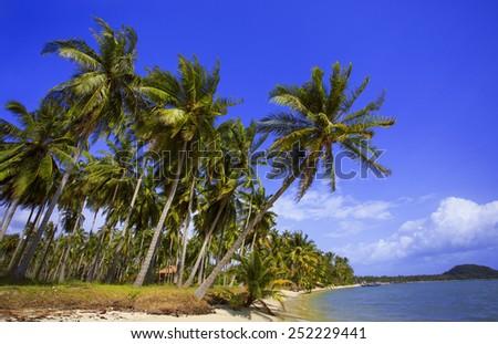 Beach. Tropical Coast. - stock photo