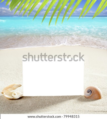 beach vacation concept blank paper in white sand beach with pearl shells and sea snail [Photo Illustration] - stock photo