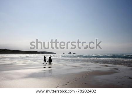 Beach Walk with a dog - stock photo