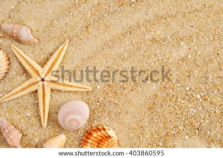 Beach wallpaper with sand and shells. Holidays background with  starfish. Summer  card with copy space.