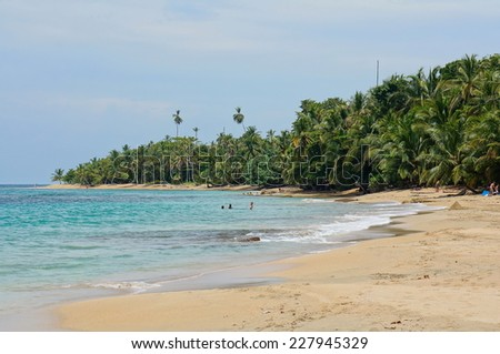 Beach with beautiful tropical vegetation on the Caribbean coast of Costa Rica, Punta Uva, Puerto Viejo de Talamanca - stock photo