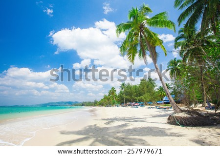 beach with coconut palm and sea - stock photo