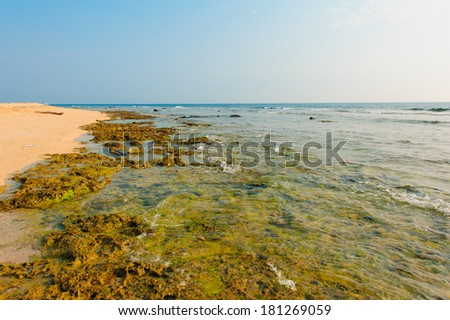 beach with coral by the blue sky - stock photo