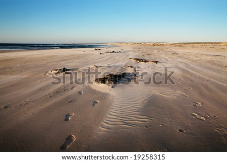 Beach with footprints. Motion because of wind blowing the sand over the beach. - stock photo